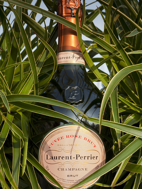 Laurent Perrier Rose Champagne wine